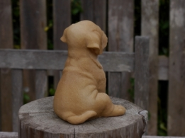 Farmwood Puppy Labrador blond